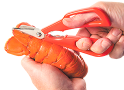 Lobster Shears